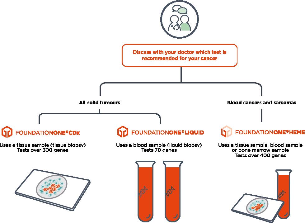 Our portfolio of comprehensive genomic profiling services: FoundationOne®CDx, FoundationOne®Liquid, and FoundationOne®Heme