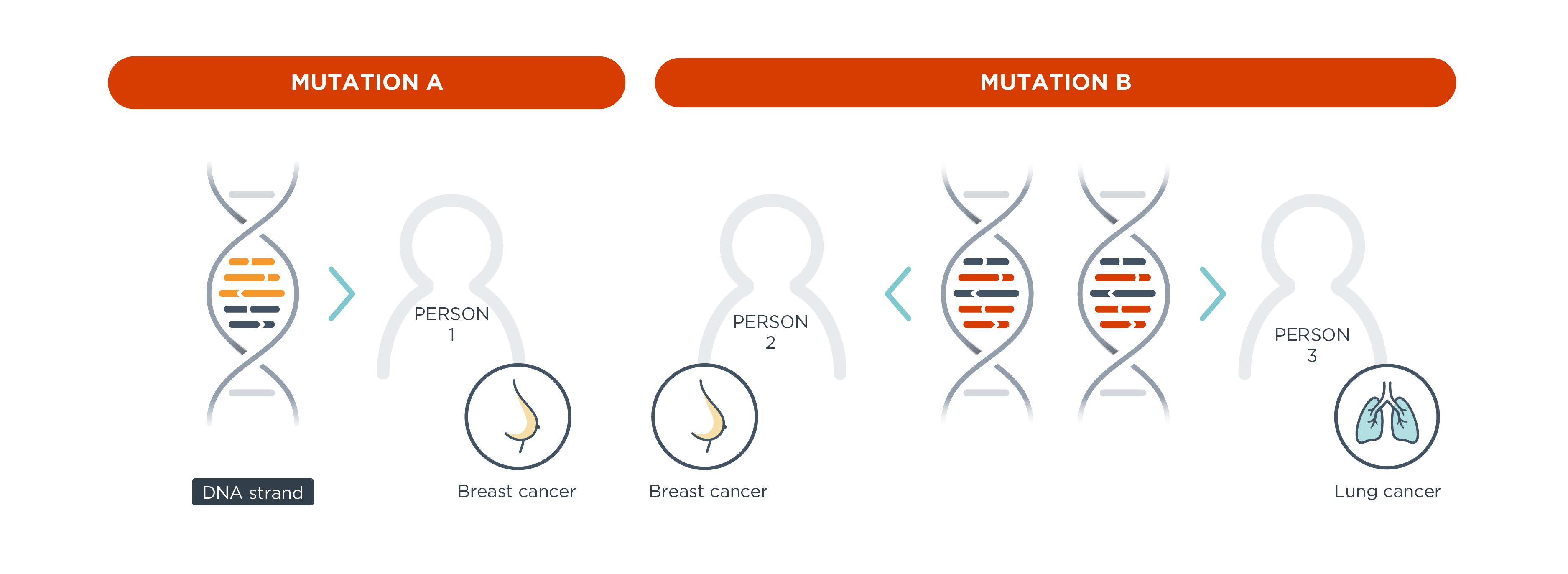 Your cancer and DNA mutations
